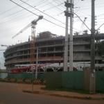 Remoção de Árvores Arena Gremio (2)