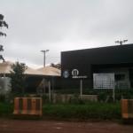 Remoção de Árvores Arena Gremio (5)