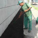 Manutenção e Conservação de Jardins